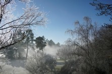 A Frosty Morning, Spa Thermal Park, Lake Taupo, New Zealand