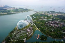 Gardens By The Bay from Marina Bay Sands, Singapore